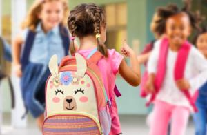 Material escolar: o que não pode faltar na mochila?