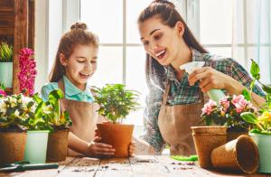 Como cuidar do seu jardim