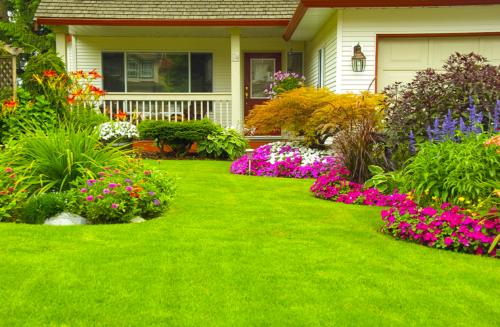 Saiba como deixar seu gramado sempre verde