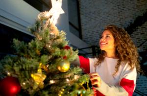 Aprenda como montar uma árvore de Natal perfeita!