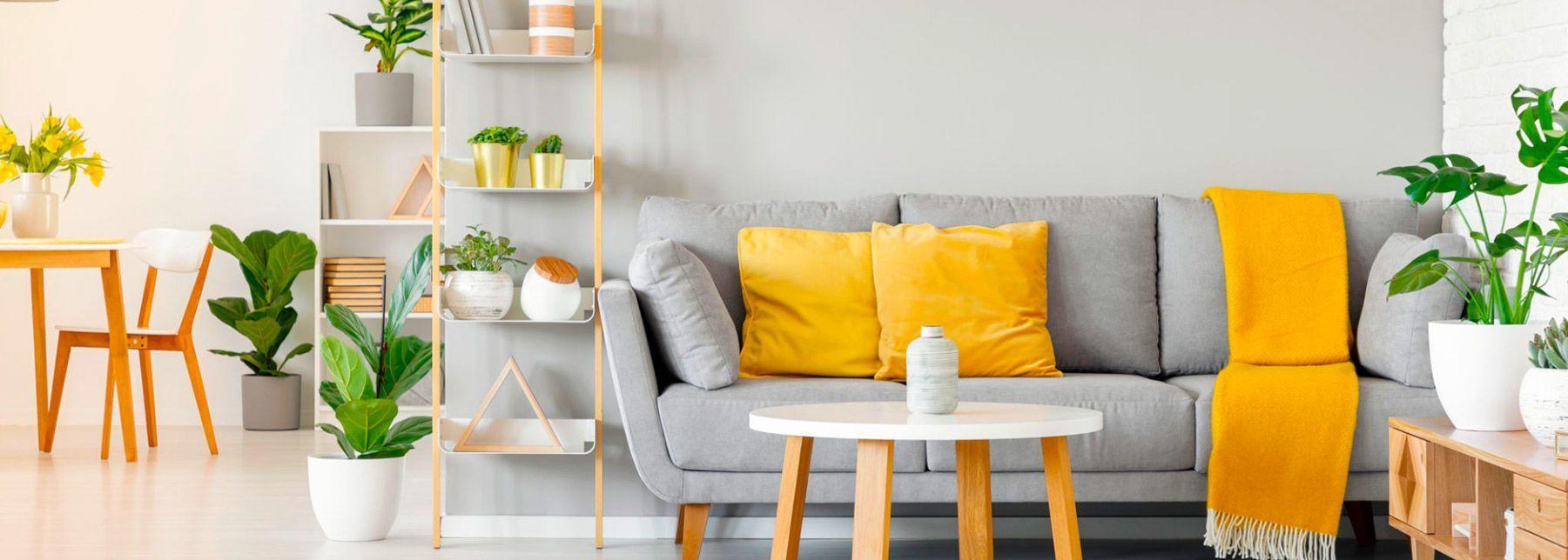 Aprenda a decorar sua casa gastando pouco!